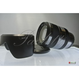 Sony E 3.5-6.3/18-200 OSS Usato